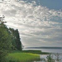Уголок Онежского озера :: Валерий Талашов