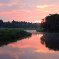 Малиновое утро :: Павлова Татьяна Павлова