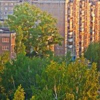 Закат солнца :: Сергей Карташов
