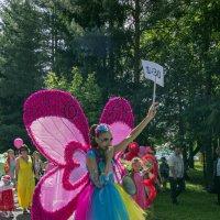 Парад бабочек :: Евгений Голубев