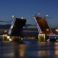 Белые ночи. Развод моста :: Владимир Дарымов