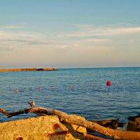 море :: Валерия Воронова