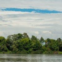Берег реки :: Юлия Жукова