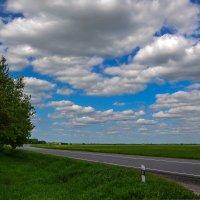 Плывут по небу облака, скользя бесшумно над землёю... :: Ирина Falcone