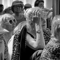Питерская публика: дамы :: sv.kaschuk