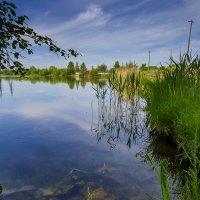 Нарвское водохранилище :: leo yagonen
