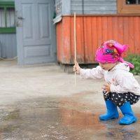 После дождя :: Alena Kindruk