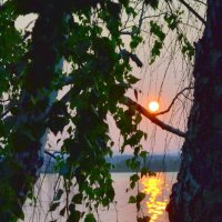Закат на озере :: Лариса Корсакова