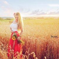 фотосессия в пшенице :: Павел Тимофеев