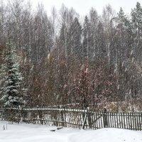 Ноябрь :: Тамара Рылова