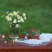 Маленькие летние радости :: Наталья Казанцева