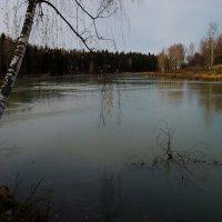 Воря, первый лед :: Владимир Брагилевский