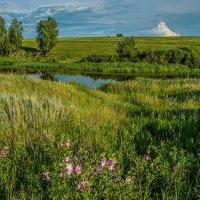 Речка, в народе - Ляпиха :: Андрей Поляков