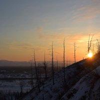 Весеннее солнце в горах :: Сергей Карцев