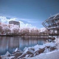 Зима +30 :: Ser Gun ...
