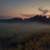 туман ... :: Маry ...
