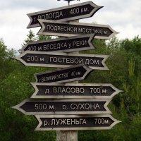 Программа на отпуск! :: Елена Швецова