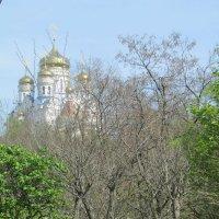 Собор казанской иконы божьей матери г. Находка :: Дмитрий Игнатычев