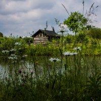 банька в деревне :: Татьяна Ov4innikova