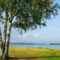 Большой Кирсинский пруд... :: Александр Широнин