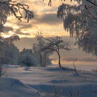Зимний вечер :: Владимир Миронов