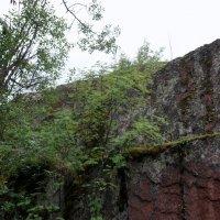 Пещеры Sokanlinna :: Елена Павлова (Смолова)