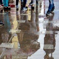 А в Питере....дожди. :: Ольга Лиманская