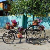 Такая вот карета... :: Светлана Игнатьева