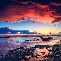Bloody Skies :: Ruslan Bolgov