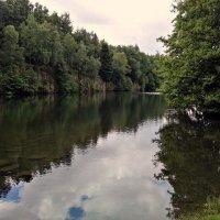 Лесное озеро... :: Эдвард Фогель