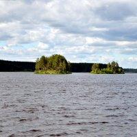 Красота природы :: Елизавета Ряпосова