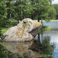 Вуокса  вид на реку :: maikl falkon