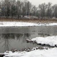 Дыхание зимы :: Владимир