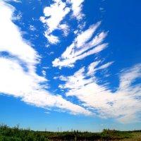 Под облаками :: Андрей Заломленков