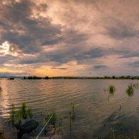 На озере Мылки. :: Сергей Щелкунов