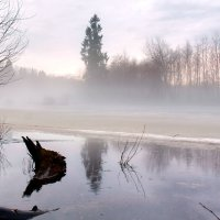 Тёплым вечером на Ояти :: Владимир Миронов