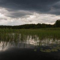 Перед грозой :: Сергей Григорьев