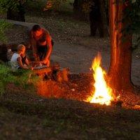 у вечернего огня :: Елена Дапирка