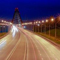 Бугринский мост :: Людмила Ильина