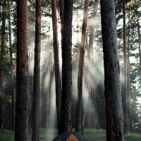 Природа :: Илья Матвеев