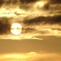 Солнце, усмирив  свой бег... :: Владимир Гилясев