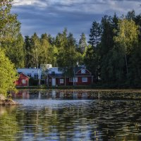 Цветение озера :: Евгения К