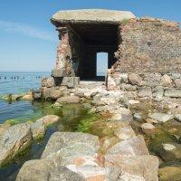 В развалинах строго форта :: Александр Степовой