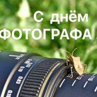 С днём ФОТОГРАФА ...!!!! :: Серёжа Стрельников