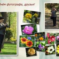 С Днём фотографа! :: Татьяна Смоляниченко