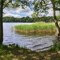 Озеро Босарпасйон, Швеция :: Priv Arter