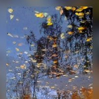 Осень... :: Александр Широнин