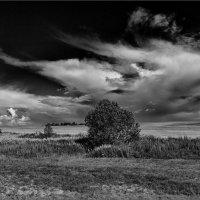 Небо - как будто летящий мрамор...© :: Александр Никитинский