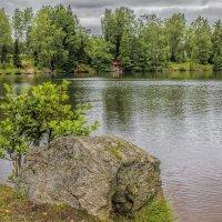 Зелень лета :: Евгения К