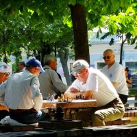 Шахматный этюд №2 :: Владимир Бровко